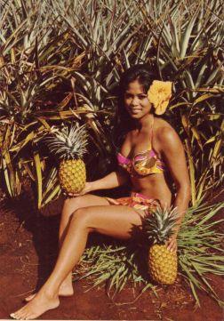Fallen Pineapple