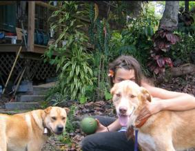 Shep, Milo, & Alex